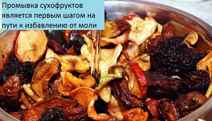 В сушеных яблоках завелись червяки