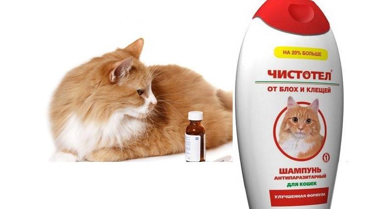 Шампунь для кошек от блох и паразитов