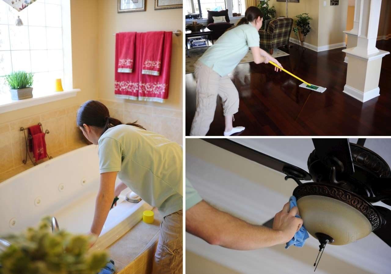 Клопы в квартире: как избавиться самостоятельно, или с помощью служб