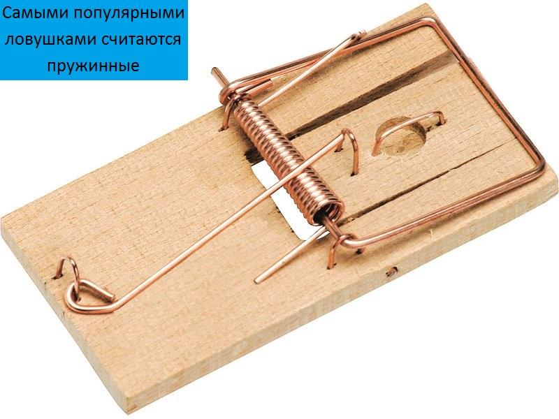 Как пользоваться мышеловкой, как её снарядить и установить?